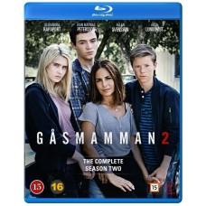 Gåsmamman - Naarasleijona - Kausi 2 - Blu-ray